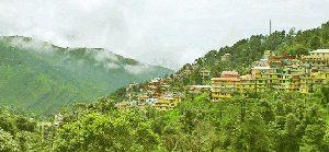 Yoga Teacher Training in Dharamsala, India